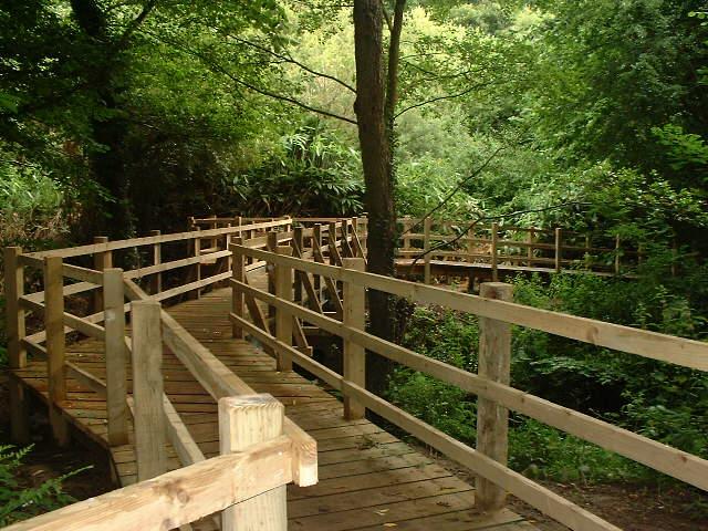 Liss Forest Footbridge, Liss