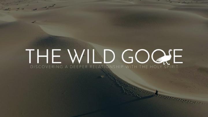 Wild Goose Series.jpg