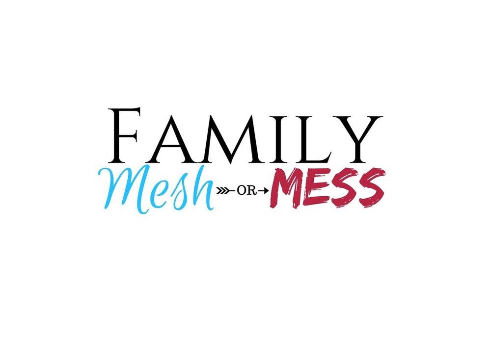 Nelz Samuel - Family Mesh or Mess.jpg