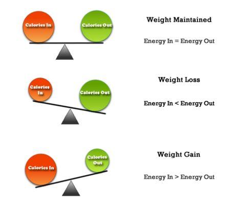 Calorie goal scales.JPG