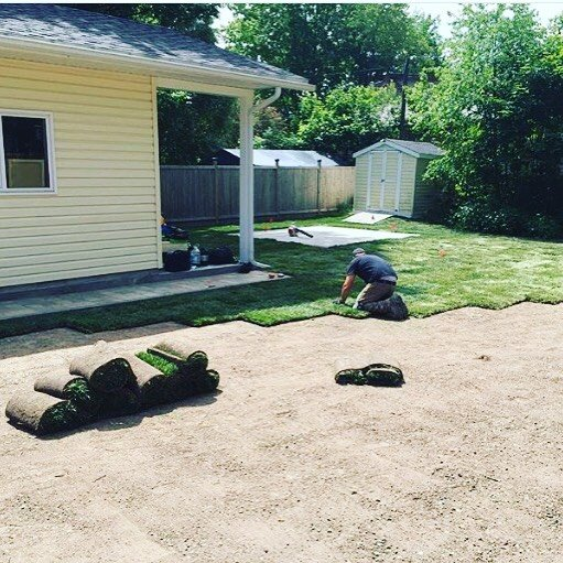 Backyard Sod Install - Staggered Joints Are The Key To Healthy Growth
