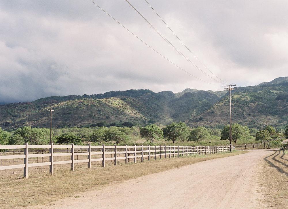 Dillingham Ranch-016.jpg