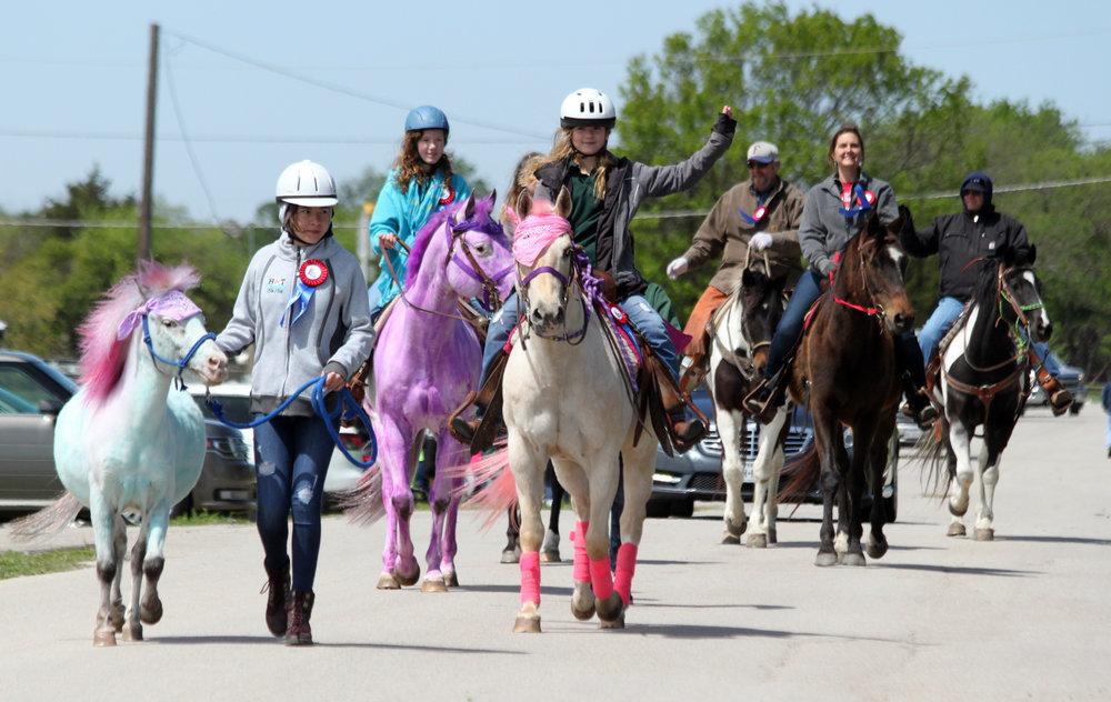 Parade horses.jpg