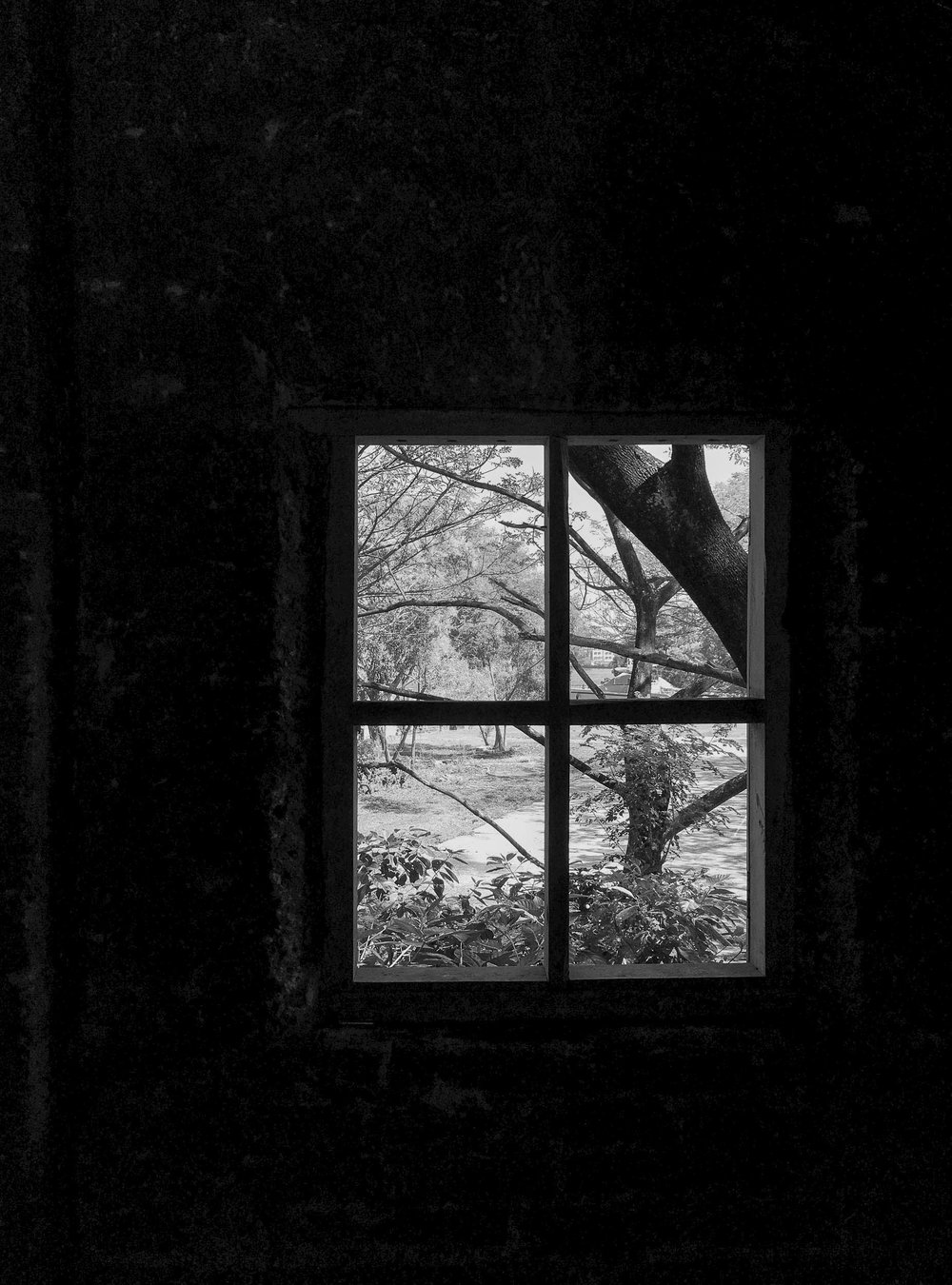 Sindhur_Photography_Kochi Muziris Biennale -2019-40.JPG
