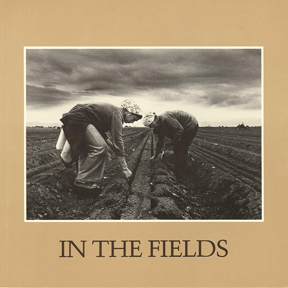 In The Fields.jpg