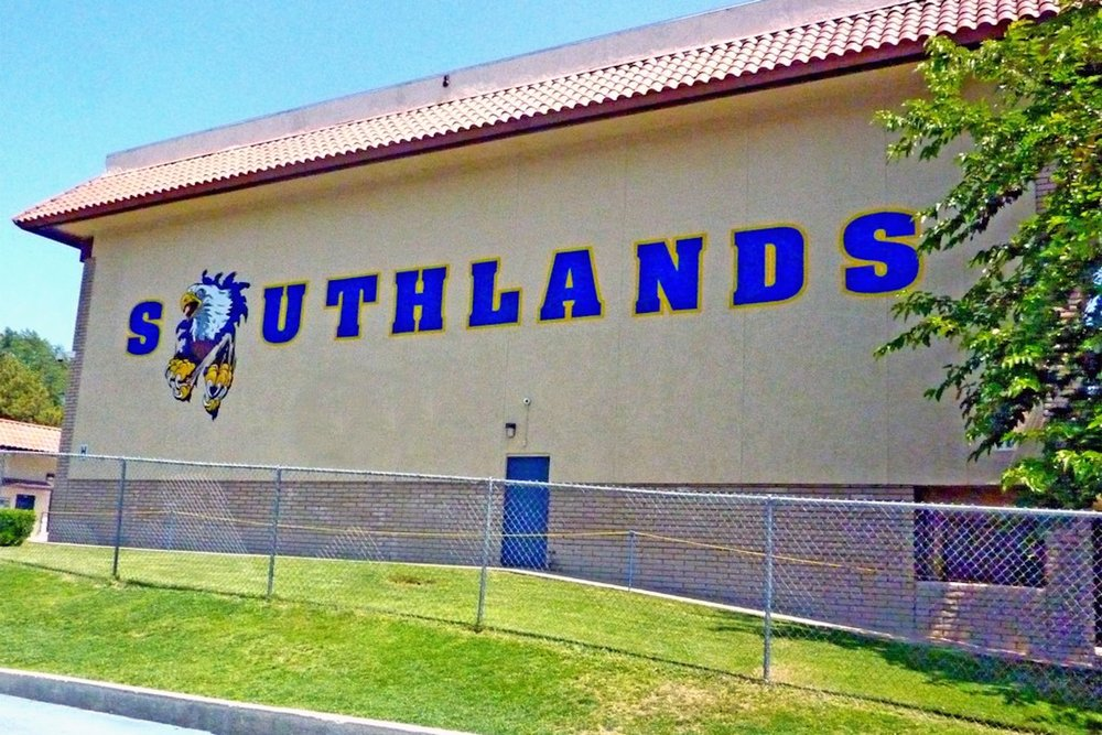 Southlands Christian hand painted school gym mural