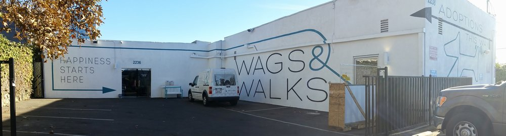 Wags & Walks hand painted graphic mural