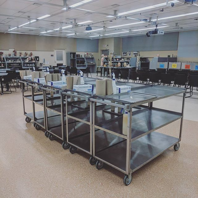 Who's ready to learn #anatomy with this set of wheels? 😍 . . . . #anatomyeducation #medschool #physiotherapy #occupationaltherapy #anatomylab #cadaver #biology #science