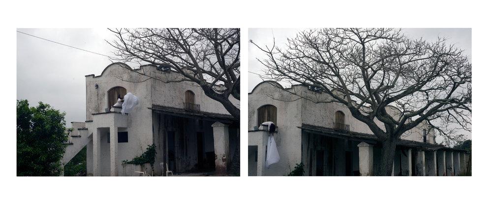 """Lençol Barroco , Museu Bispo do Rosario """"Das Virgens em Cardumes.."""" curadoria Daniela Labra 2016, diptico impressão com jato de tinta sobre papel de algodão, 50 x 150 cm 1/2"""