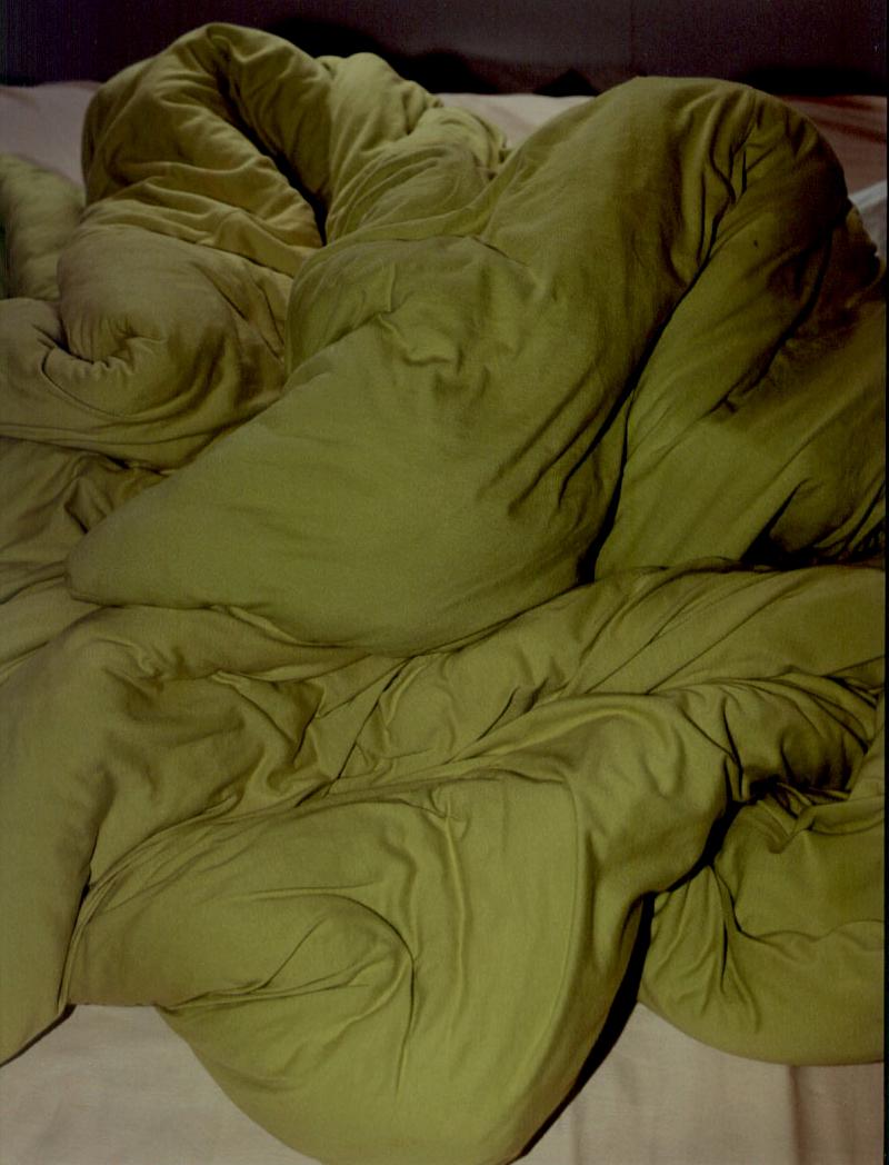 cobertor  110x80cm 2/3 jato de tinta sobre papel de algodão.  Coleção Maria Helena Nascimento.