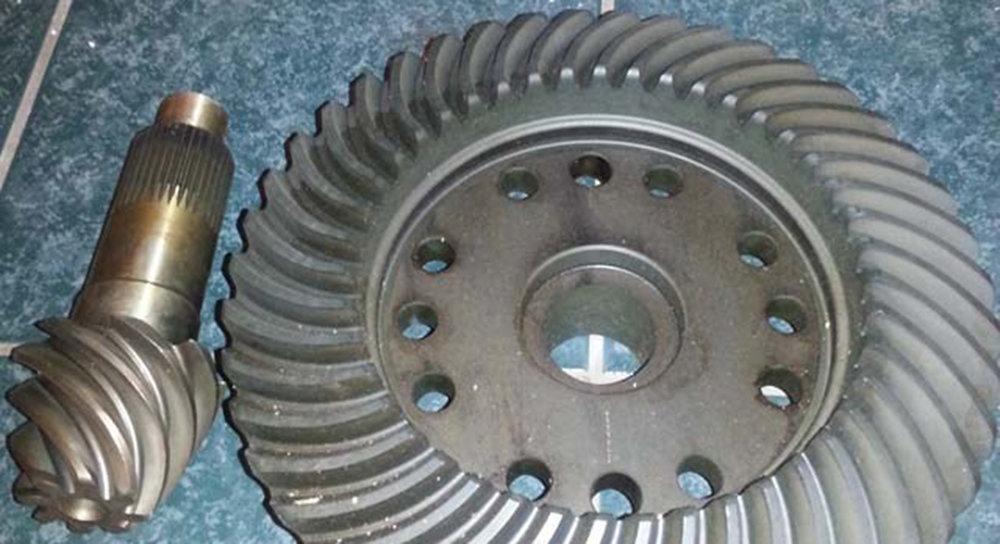 DBL Design Dana 300 Gear