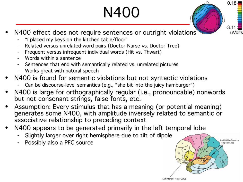 N400.jpg