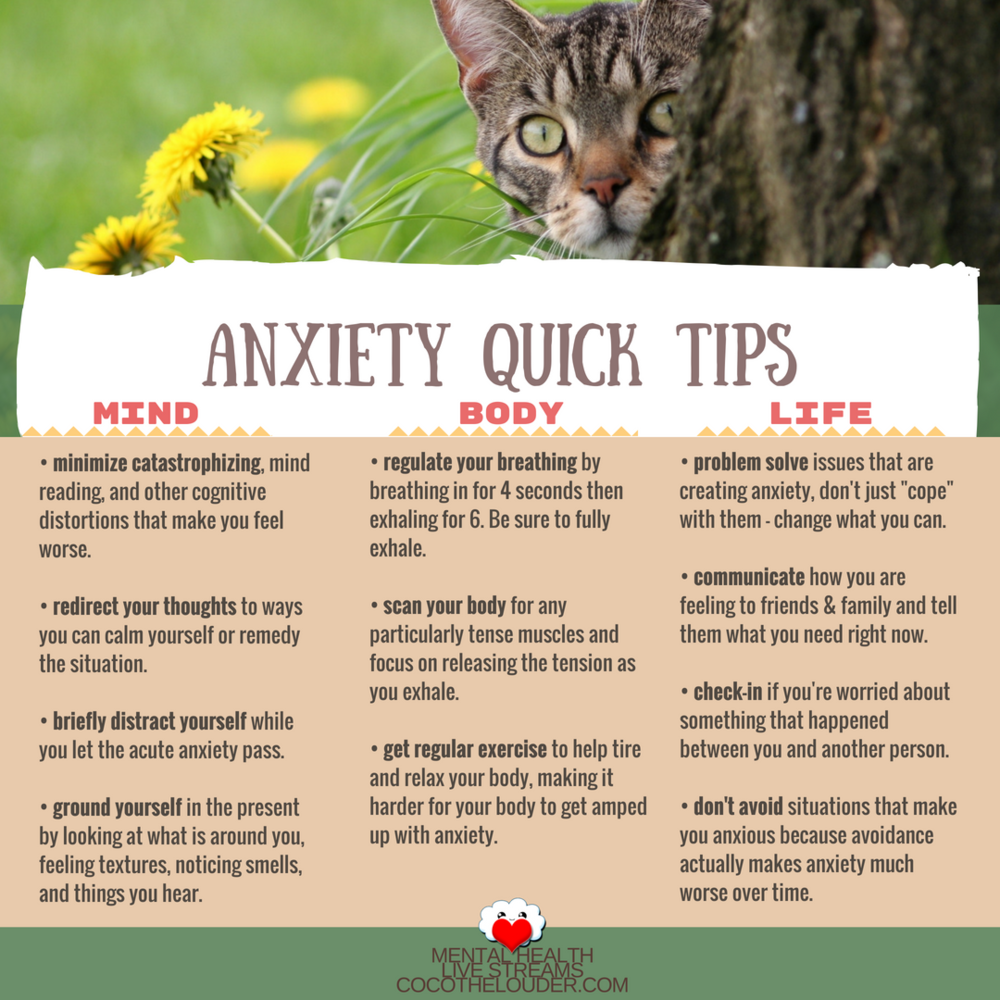Anxiety Quick Tips (1).png