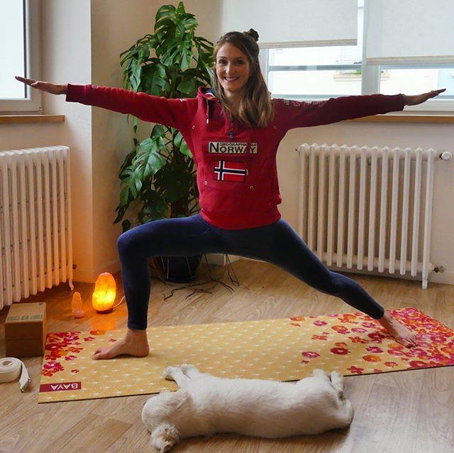 ✨Woop woop✨, et si on démarrait la journée avec un flow yoga de 45 minutes ? Tout juste mis en ligne, retrouvez un tuto de yoga dynamique qui reprend la pratique explorée avant les vacances, baptisée «Twist and shine». Un flow à base de torsions et de transitions en Vinyasa pour cultiver la fluidité et un léger effet detox après les fêtes. • • Retrouvez là juste ici : https://youtu.be/6RPpiUM3oRQ • • Belle pratique si vous choisissez de nous rejoindre en ligne et n'oubliez pas de pratiquer en trouvant une liberté de mouvement au delà de la posture pour trouver votre propre expression du yoga sur le tapis, c'est le plus important 🙌🏼✨🙂. • • N'oubliez pas de me dire ce que vous en avez pensé et si vous souhaitez d'autres tutoriels de yoga dynamique ! • • 🙏  Namasté 🙏. • • #escaleyoga #inspire #expire #explore #vinyasa #yogateacher #yogatribe #yogadynamique #tutoriel #yogafrance #twistandshine #bayafrance #bayatribe #kyoto #yogaeverydamday #yogidog