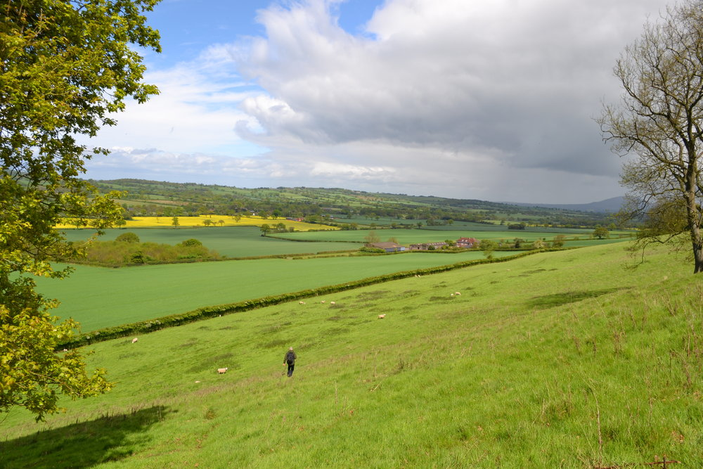 Country walking along scenic wenlock edge