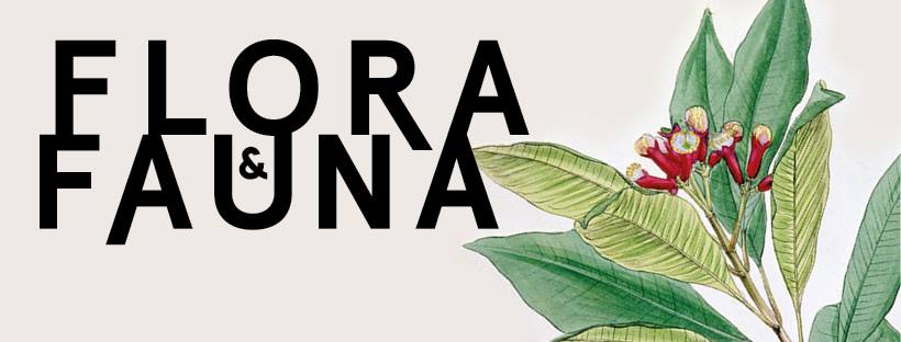 Flora&Fauna.jpg