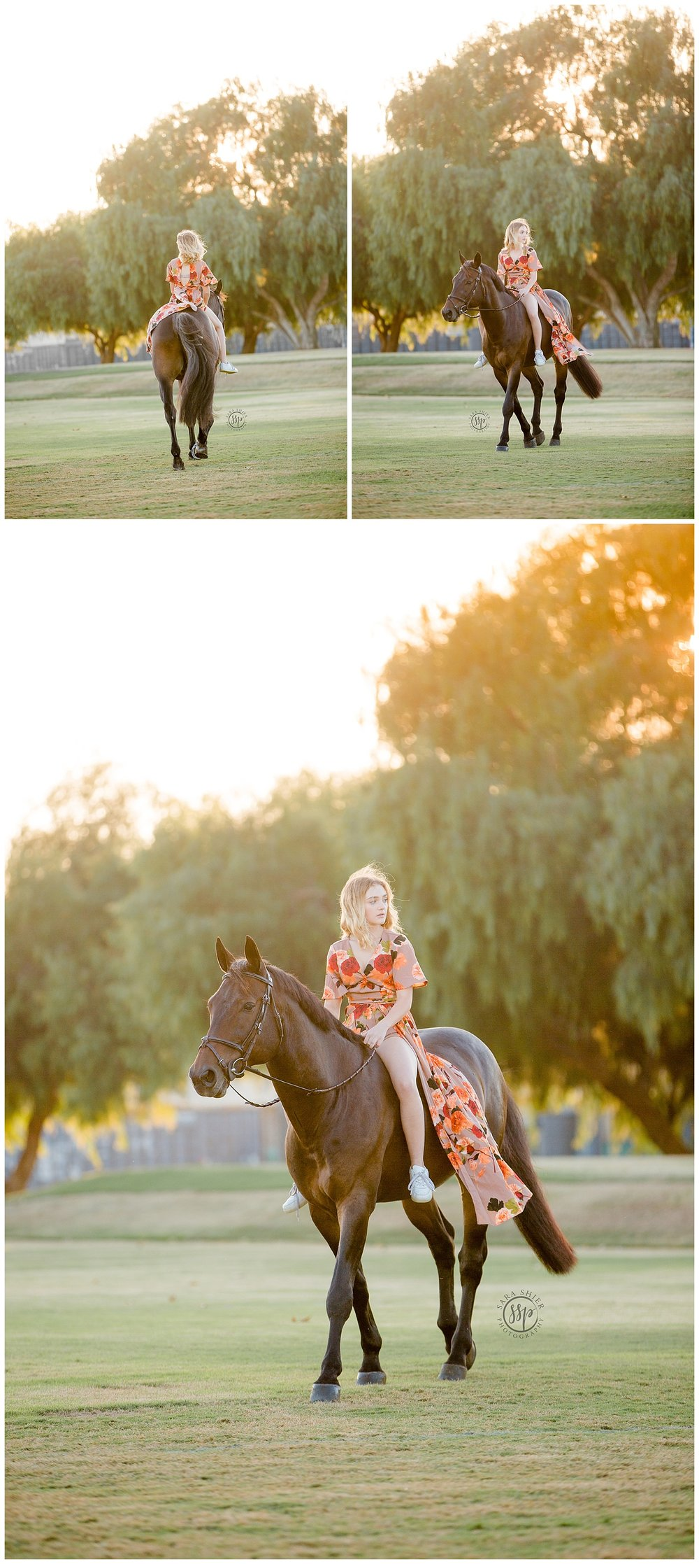 Black Background Horse Rider Equine Photographer Southern California Sara Shier Photography SoCal Equestrian Cowgirl_0087.jpg