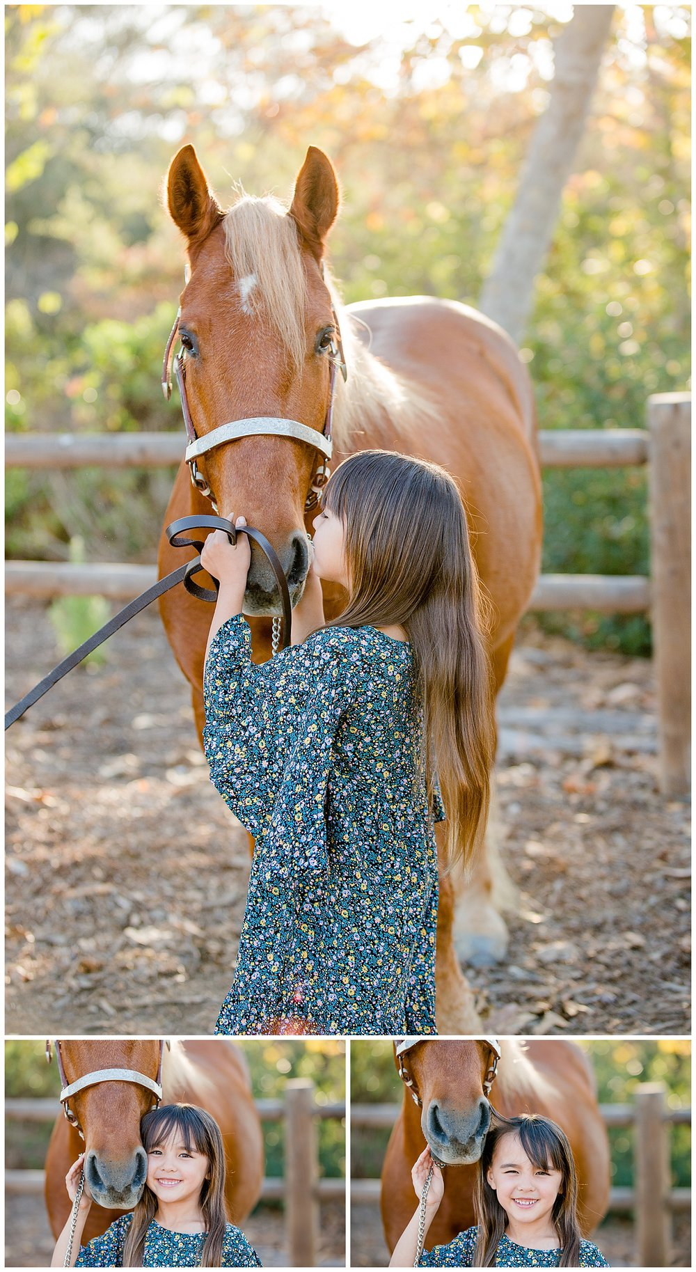 Black Background Horse Rider Equine Photographer Southern California Sara Shier Photography SoCal Equestrian Cowgirl_0277.jpg