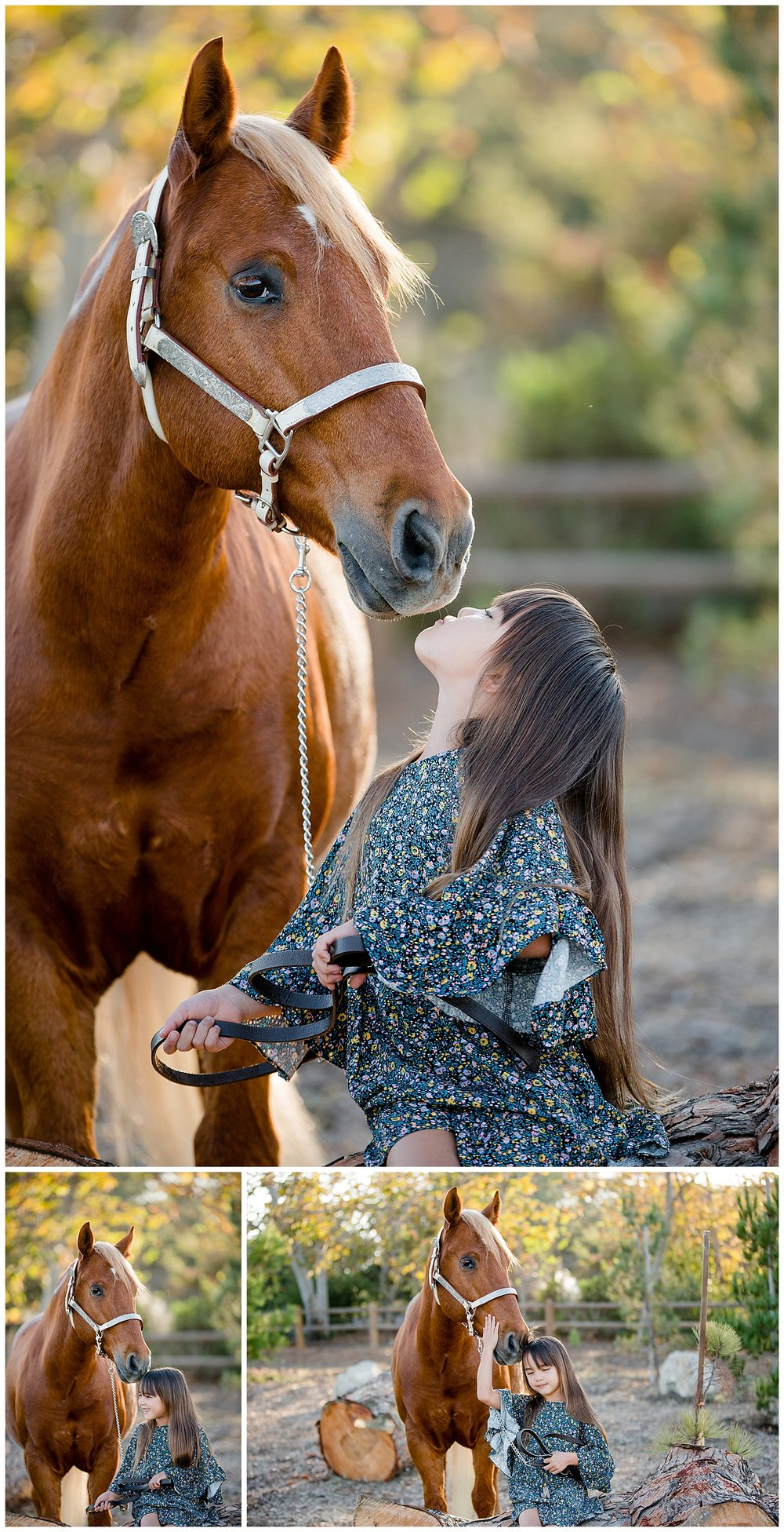 Black Background Horse Rider Equine Photographer Southern California Sara Shier Photography SoCal Equestrian Cowgirl_0280.jpg