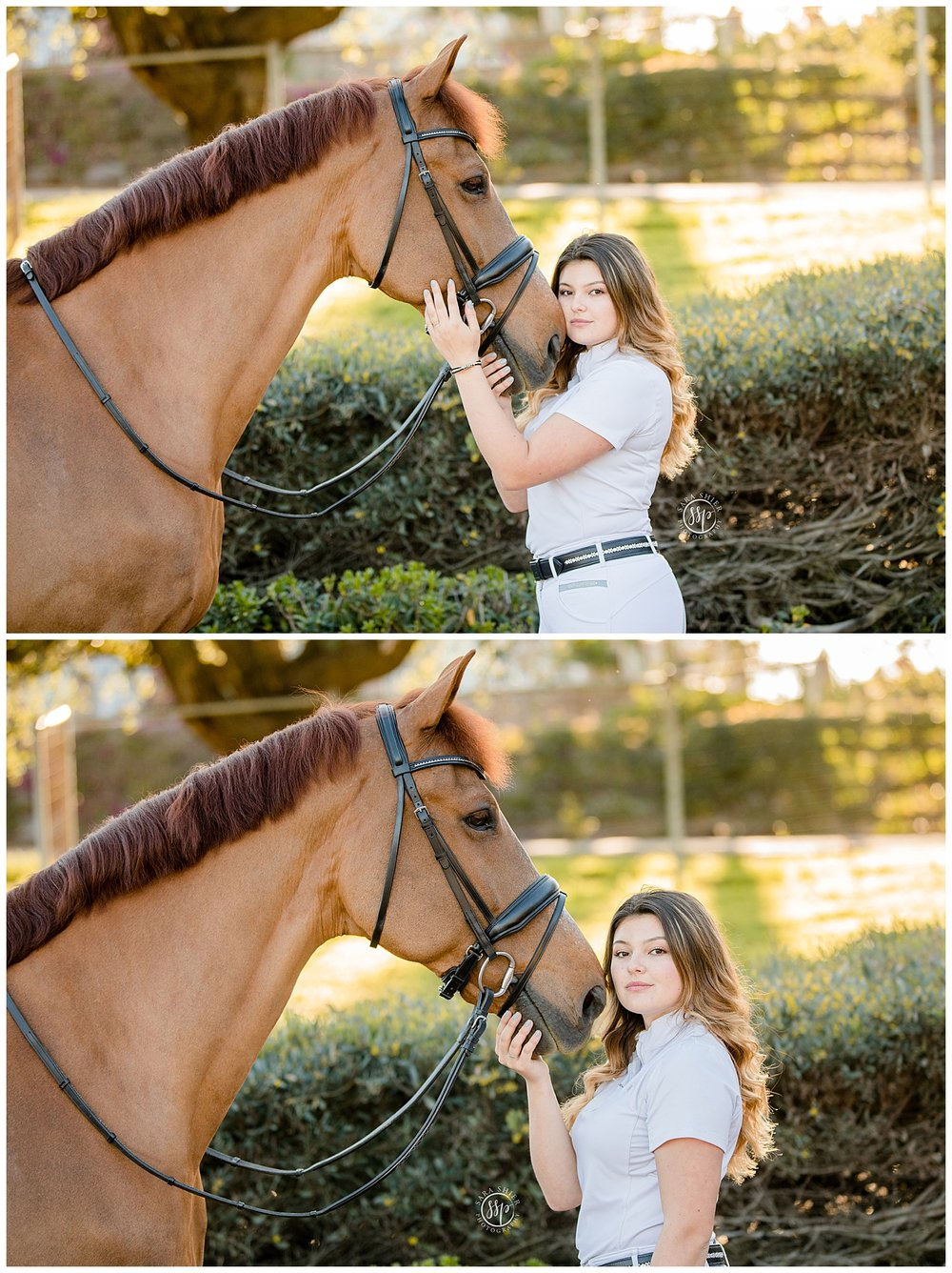 Black Background Horse Rider Equine Photographer Southern California Sara Shier Photography SoCal Equestrian Cowgirl_0431.jpg