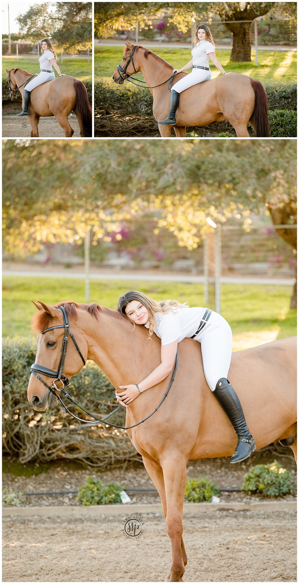 Black Background Horse Rider Equine Photographer Southern California Sara Shier Photography SoCal Equestrian Cowgirl_0435.jpg