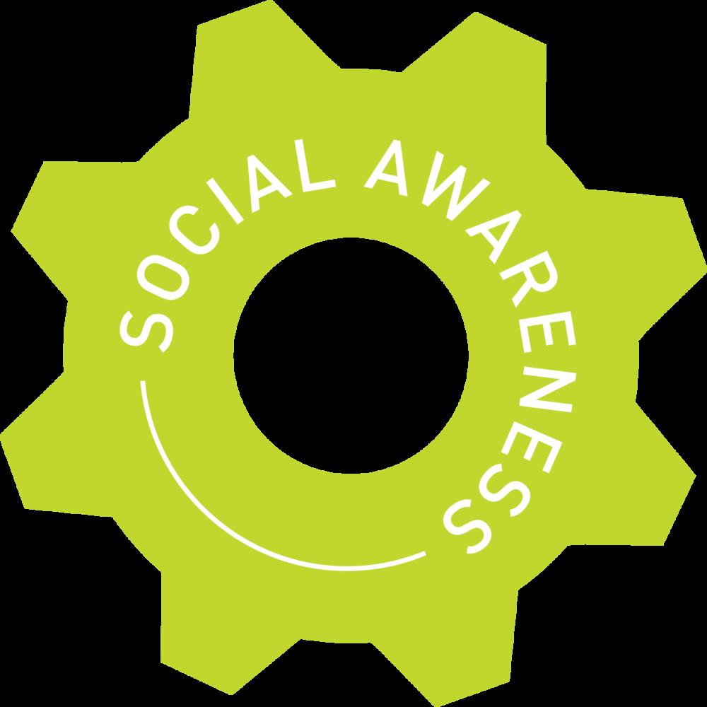 social awareness cog.png