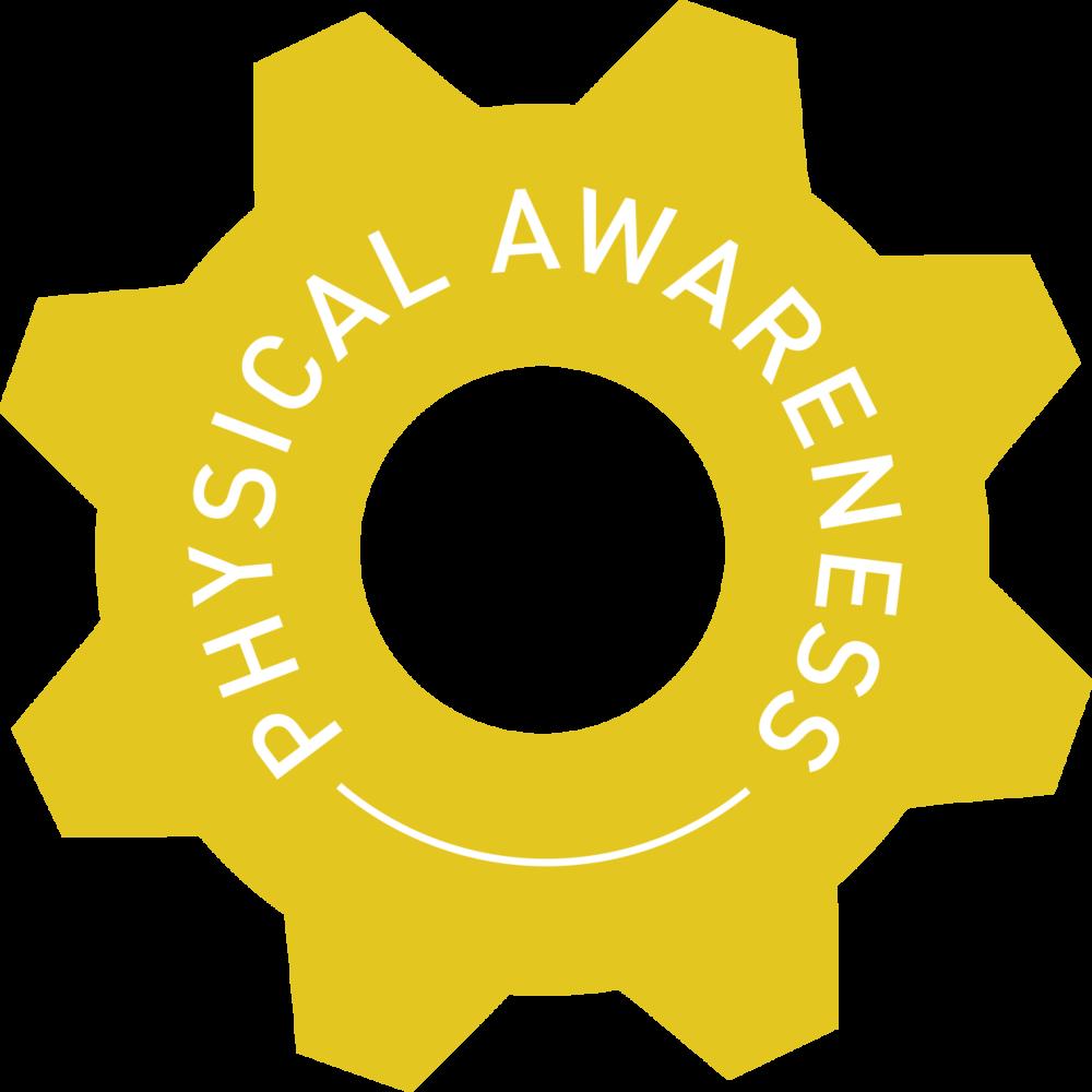 physical awareness cog.png