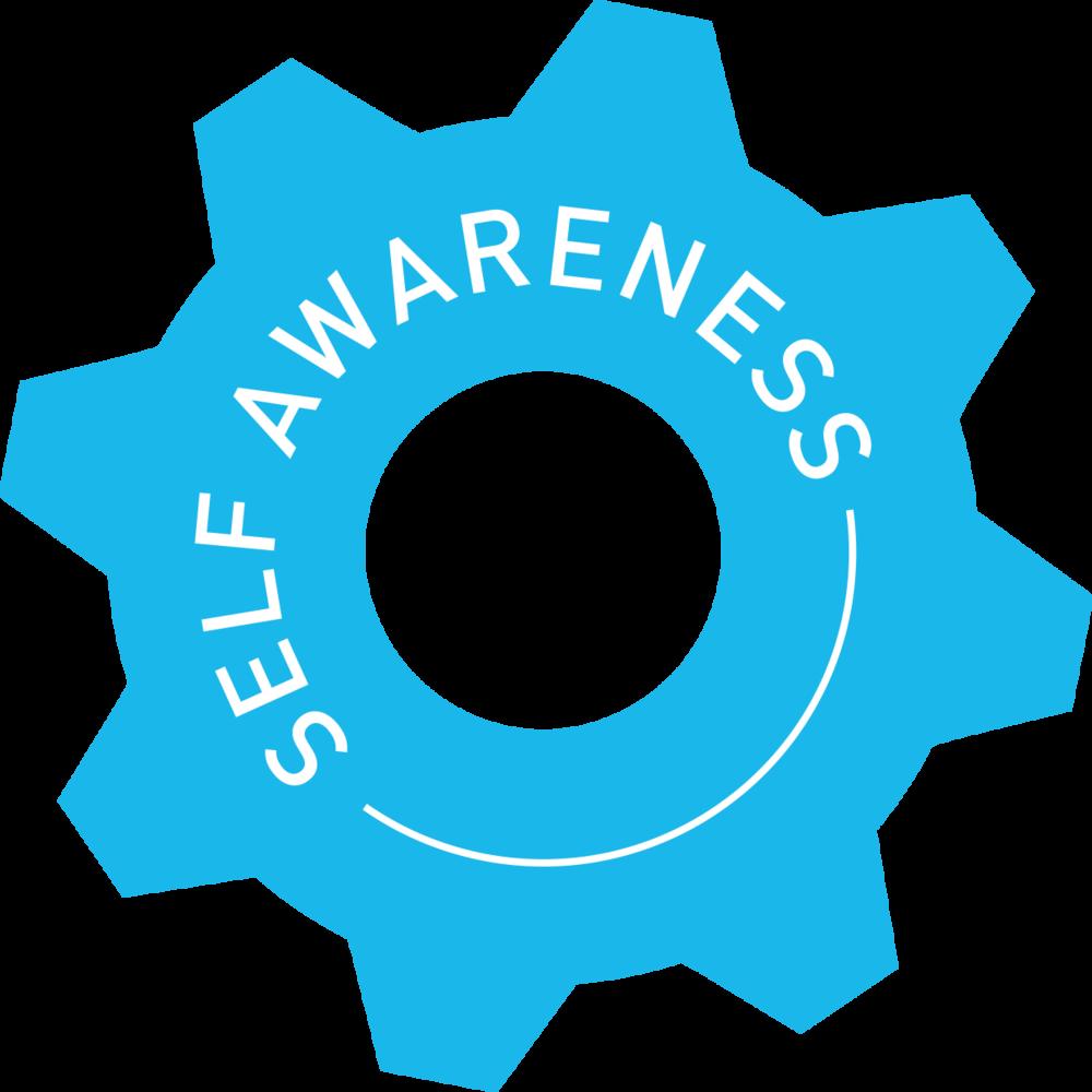 self awareness cog.png