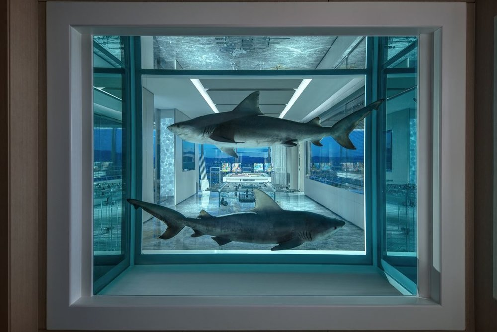 Entrance view in the Empathy Suite, Image courtesy of Artsy.