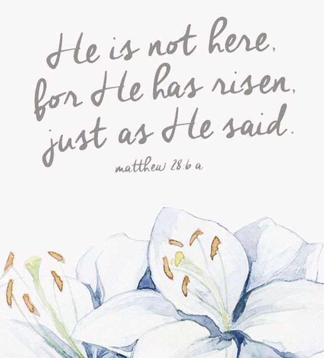 🕊 Wishing everyone a blessed Easter surrounded by family and friends! ✝️🌿 . . . #heisrisen #christ #matthew28 #graceupongrace #faith #gratitude #grateful #gritandvirtue #eastersunday #blessings #family