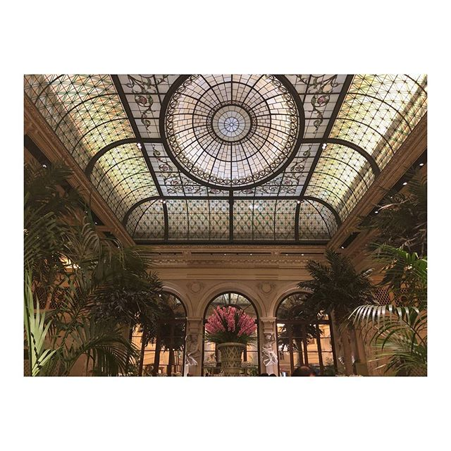 The Palm Court - New York, NY. December 2018