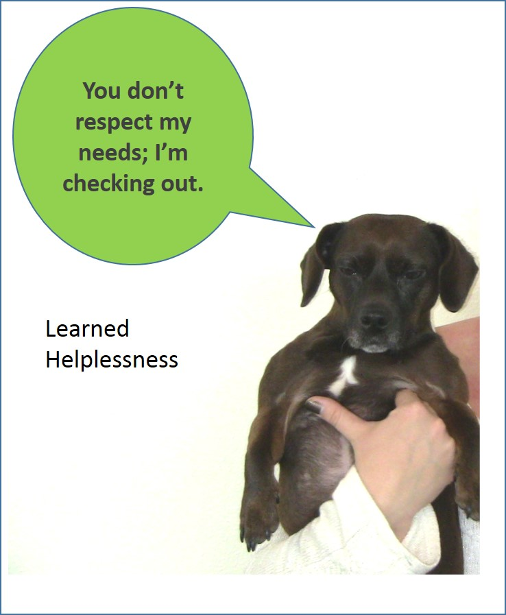 LearnedHelplessness.jpg