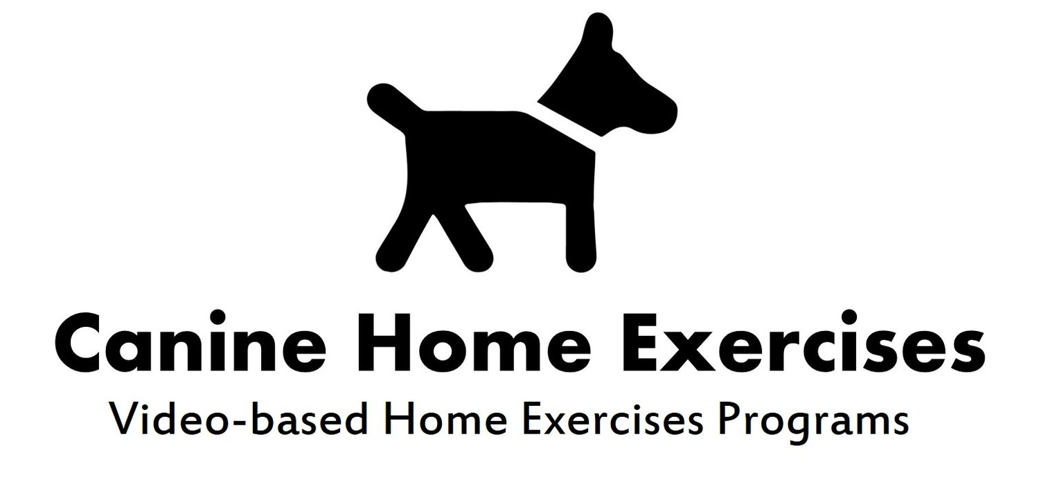 Canine Home Exercises