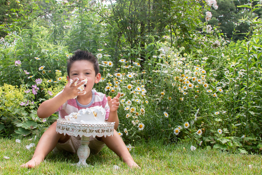 Big brother eating a cake in Ringwood, New Jersey Botanical Garden.Photograph by Laughing Heart Photography.