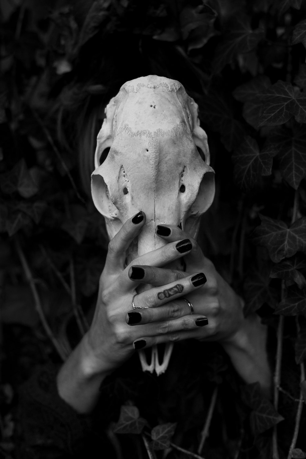 Woman with skull in Ridgewood, New Jersey for Halloween. Photo by Laughing Heart Photography.