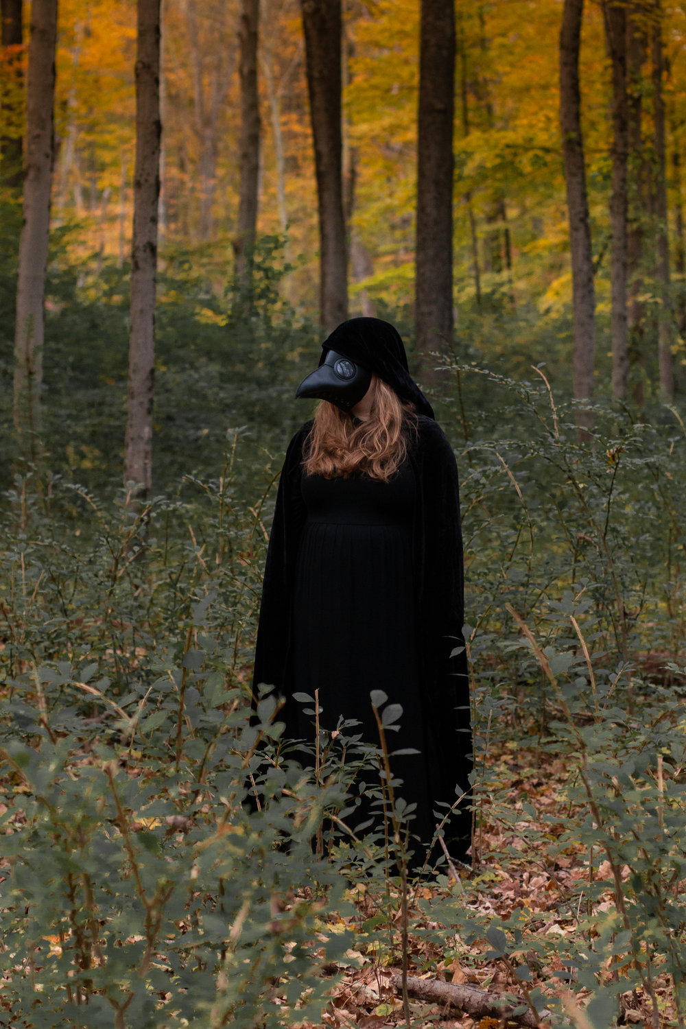Woman wearing all black with a long nose mask standing in the woods of Hewitt, NJ. Photo by Laughing Heart Photography.