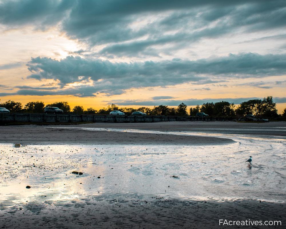 brooklyn beach-2.jpg