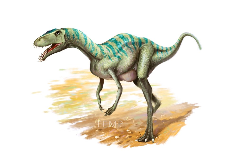 02 Laevisuchus Indicus - Second Last.jpg