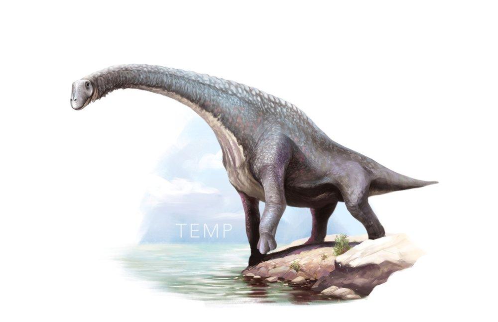04 Titanosaurus Indicus - Second Last.jpg