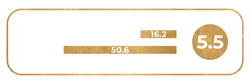 Ring_Size_5.5.png
