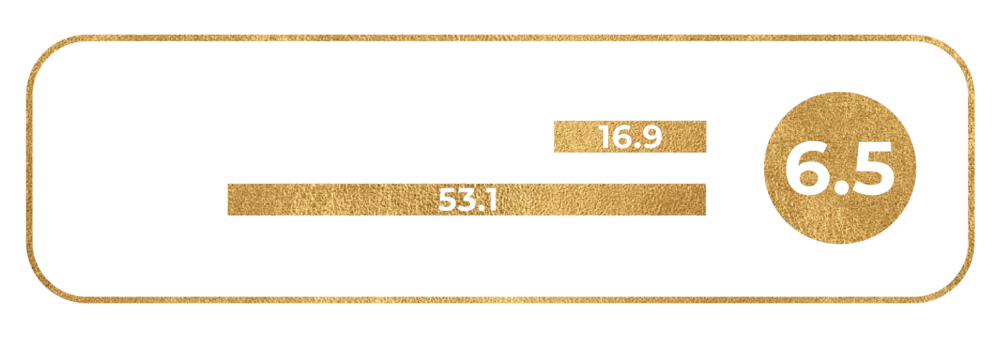 Ring_Size_6.5.png
