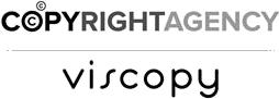 viscopy_254pix_logo.png