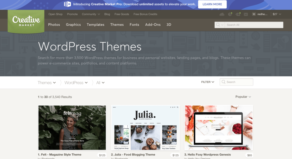 Before launching a blog. Great themes.