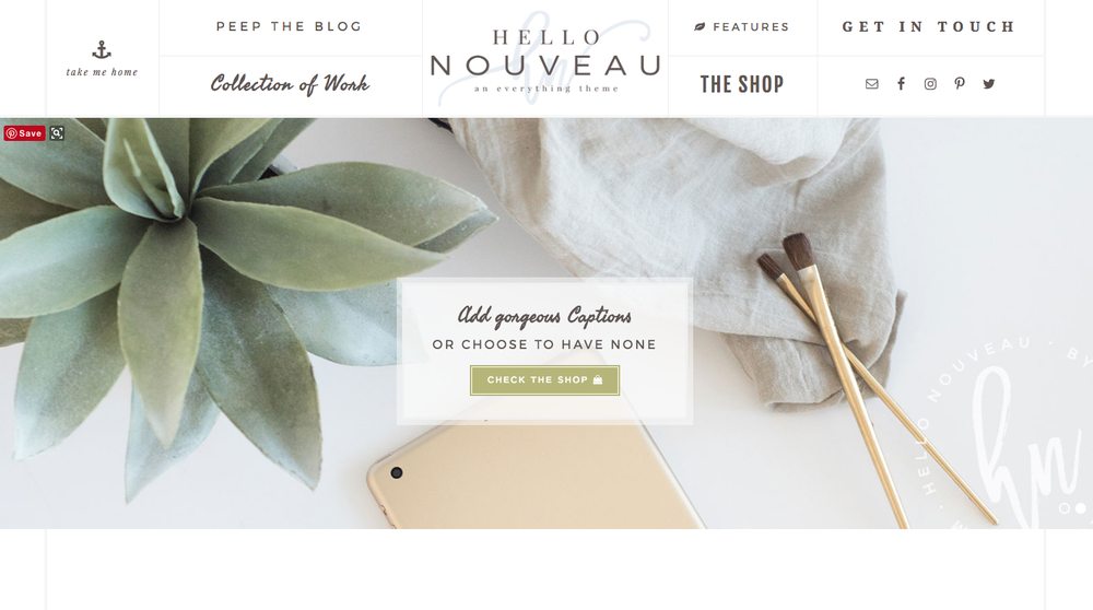 Best Feminine Wordpress Themes for Bloggers Hello Noveau