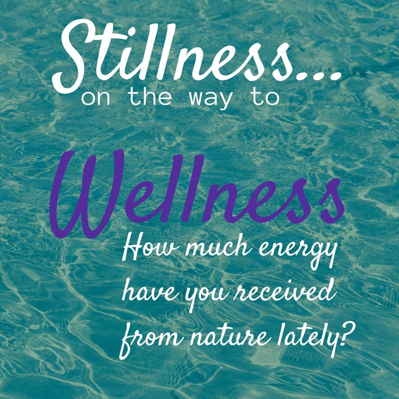 stillness-wellness.png