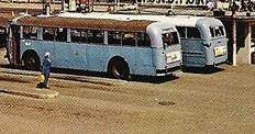 Buss_14.jpg
