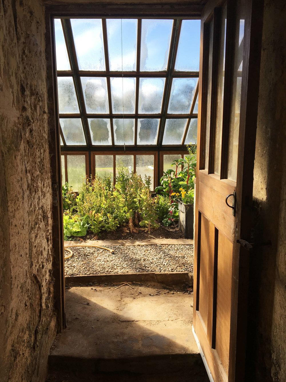 positive-potions-greenhouse.jpg