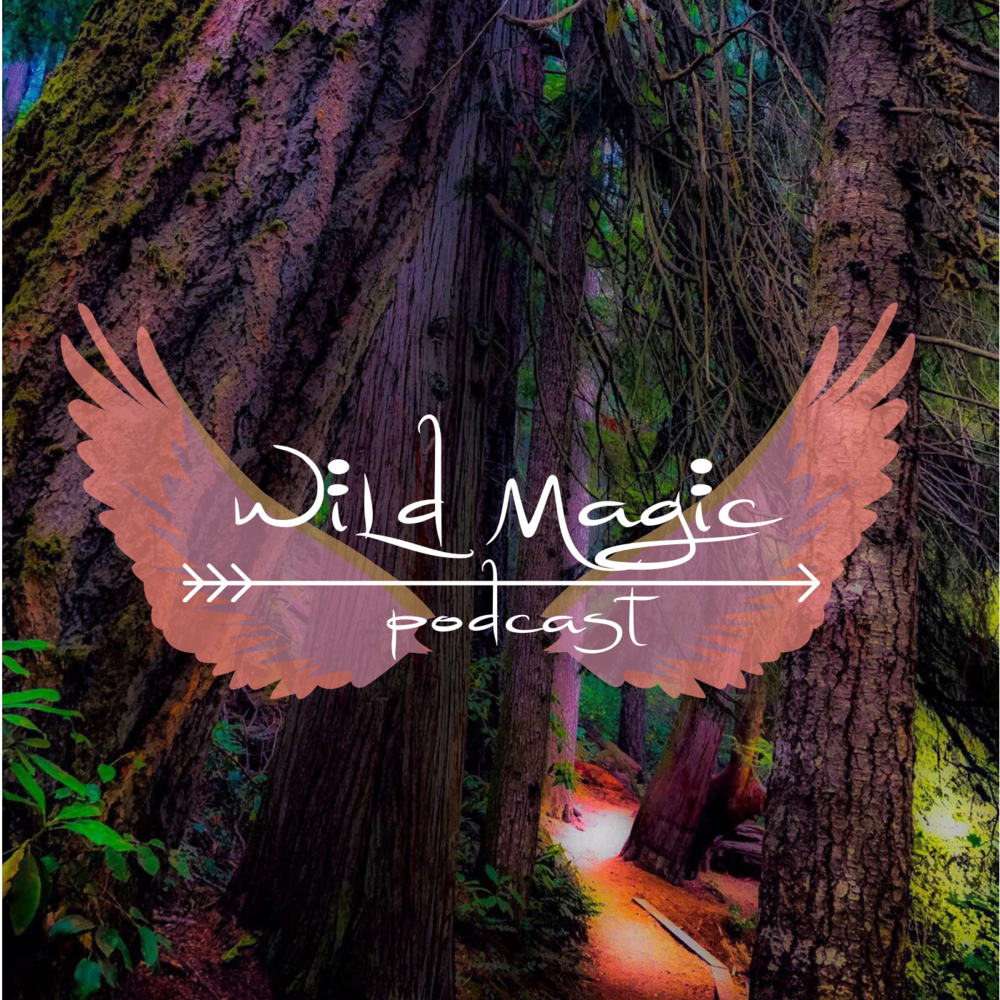 Wild Magic.png