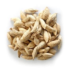 Afghan Soft-Shell Satarbai Almonds (1kg)