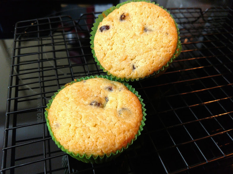 choc chip muffin.jpg